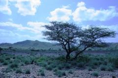 ali-sabieh-mountains-2